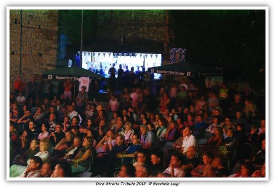 Dire Straits Tribute 2013 (4)