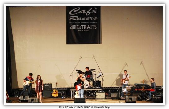 Dire Straits Tribute 2013