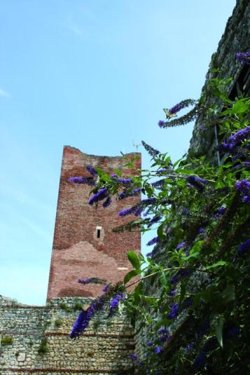 castello_di_giulietta