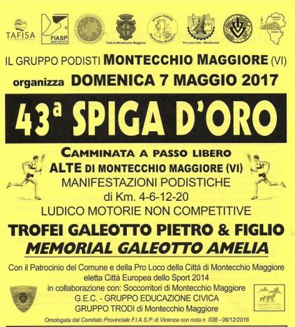 Montecchio-1