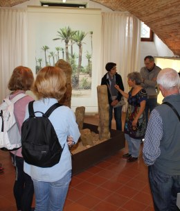 Visita guidata gratuita alla sezione naturalistica del MuseoZannato