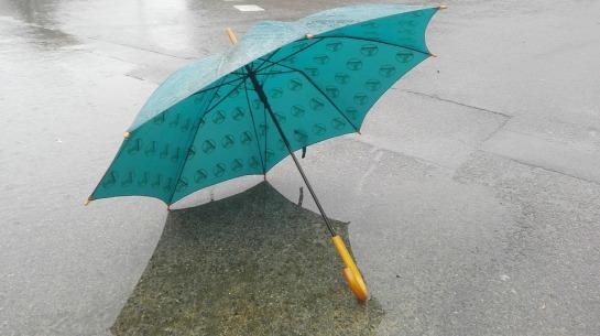 rain-2480124_960_720